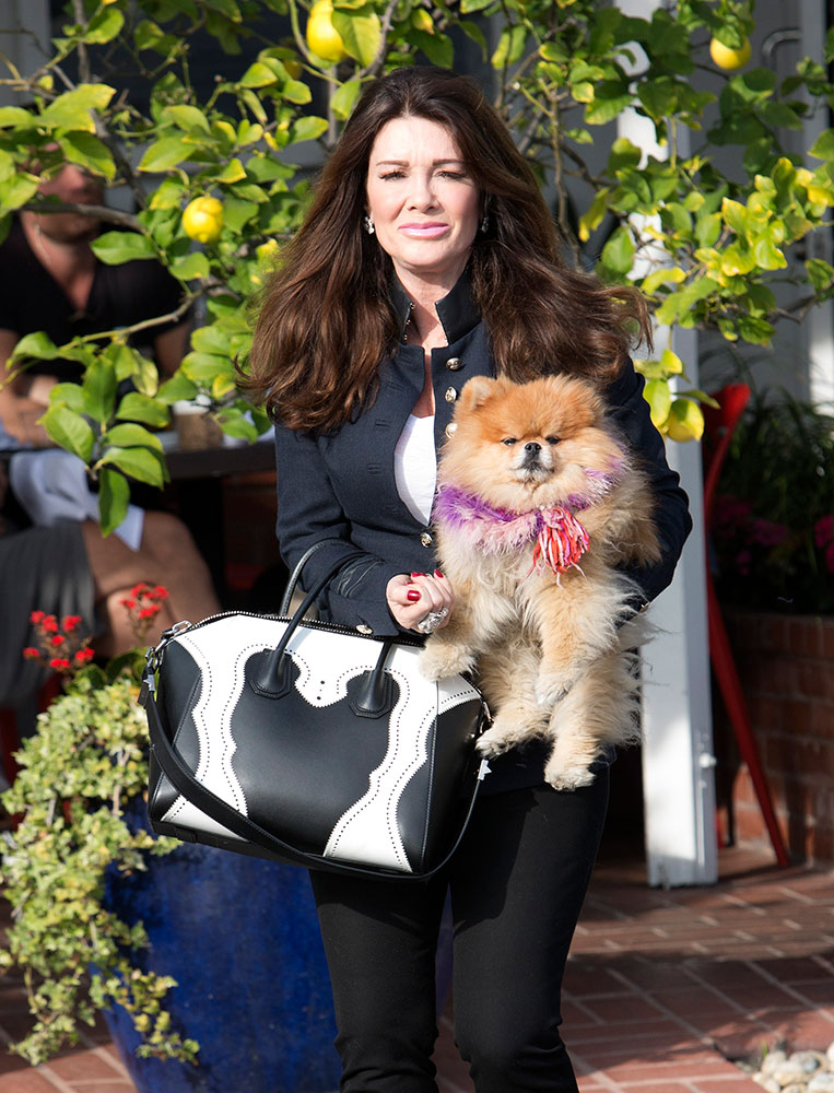 Lisa-Vanderpump-Givenchy-Antigona